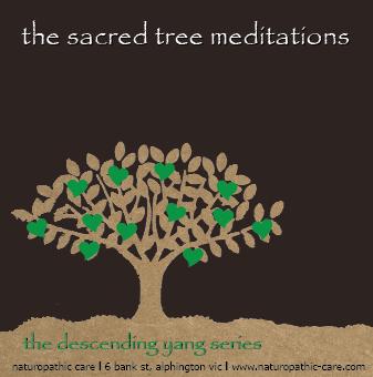 Rayid Yang Meditation CD