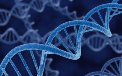 Circulating Tumour Cells (CTC) Analysis