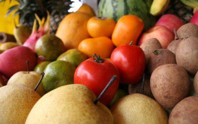 Vegan Supplement Resource